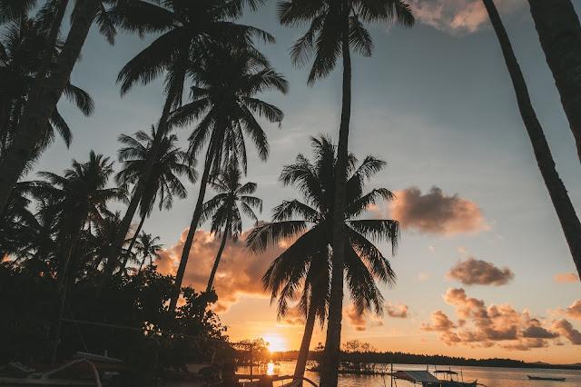 SIARGAO / Wszystkie Top miejsca na wyspie, ceny, noclegi, knajpy oraz wskazówki dotyczące podróży na własną rękę  - Czytaj więcej