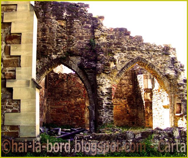 zid manastire carta