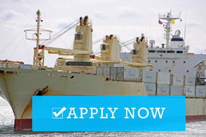 Able Seaman, Chief Engineer, Chief Officer, Master, 1/E For Cargo Vessel