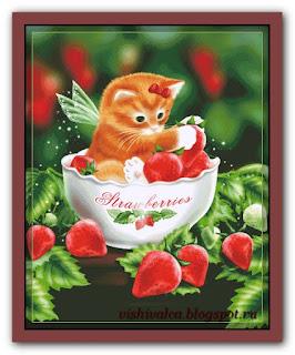 """HAED HAEDMED12354 """"Strawberry Kitten"""""""