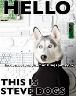 Hello, this is Steve Dogs! Steve Jobs? Funny dog wearing sweater