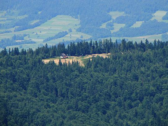 Szczyt Tobołów (994 m n.p.m.) - widok ze stoków Turbacza.