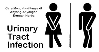 obat herbal anyang-anyangan, urinery tract infection