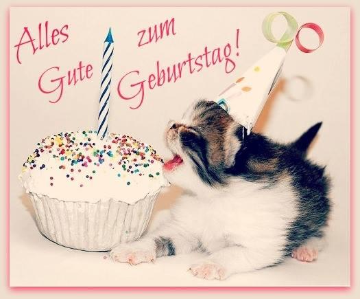 Kätzchen Alles Gute zum Geburtstag!