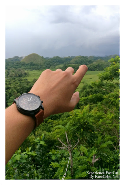 Timex Watch in Chocolate Hills