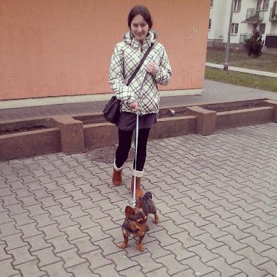 Zakupy z psem - tak czy nie?