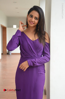 Actress Rakul Preet Singh Latest Stills in Beautiful Long Dress  0090.JPG