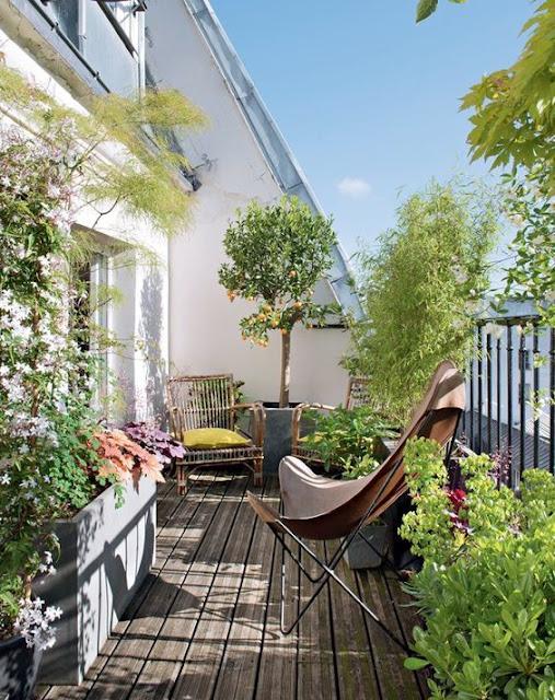 балкон-терраса утопающая в зелени