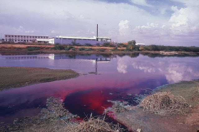 A contaminated and toxic water inland water source.