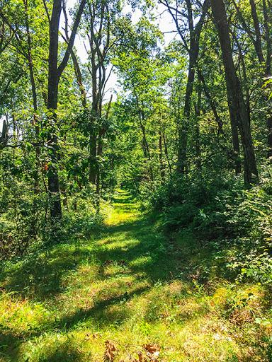 Ice Age Trail Deerfield Segment