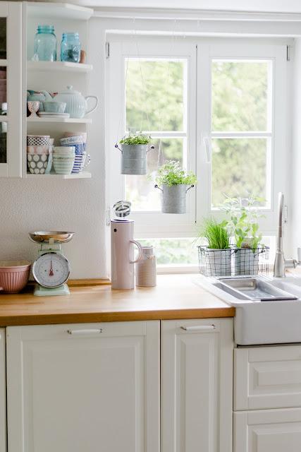 Urban Jungle in der Küche, frühlingsfrische Kräuter, Pomponetti