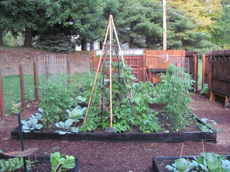 meinlessmatters    cardboard gardening method