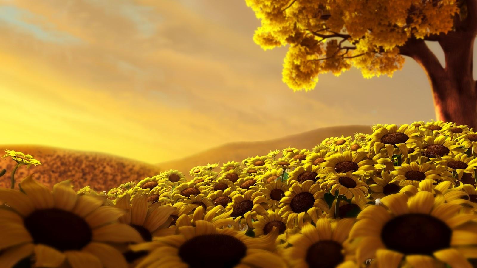Best Wallpaper Beautiful Flowers Wallpapers Hd