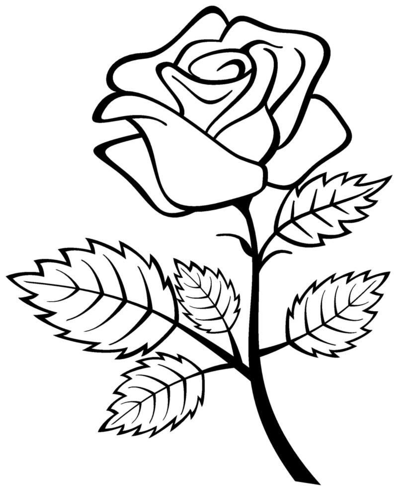 Los Dibujos Para Colorear Dibujos De Rosas Para Colorear Ramos Jarrones Corazones