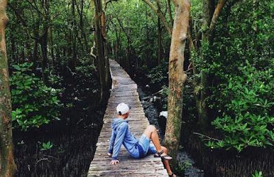 4 Wisata Alam di Lampung Yang Keren Banget