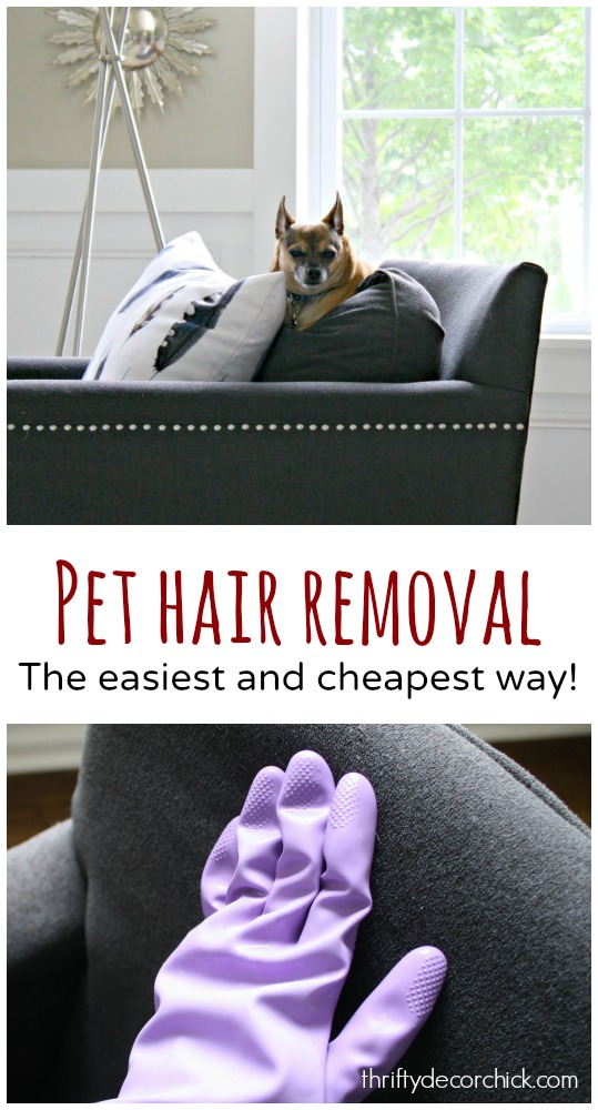 easiest way to remove pet hair