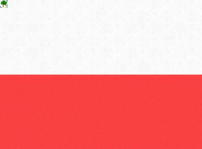 flaga Polski, tekstura, z teksturą, biało-czerwoni, patriotyzm