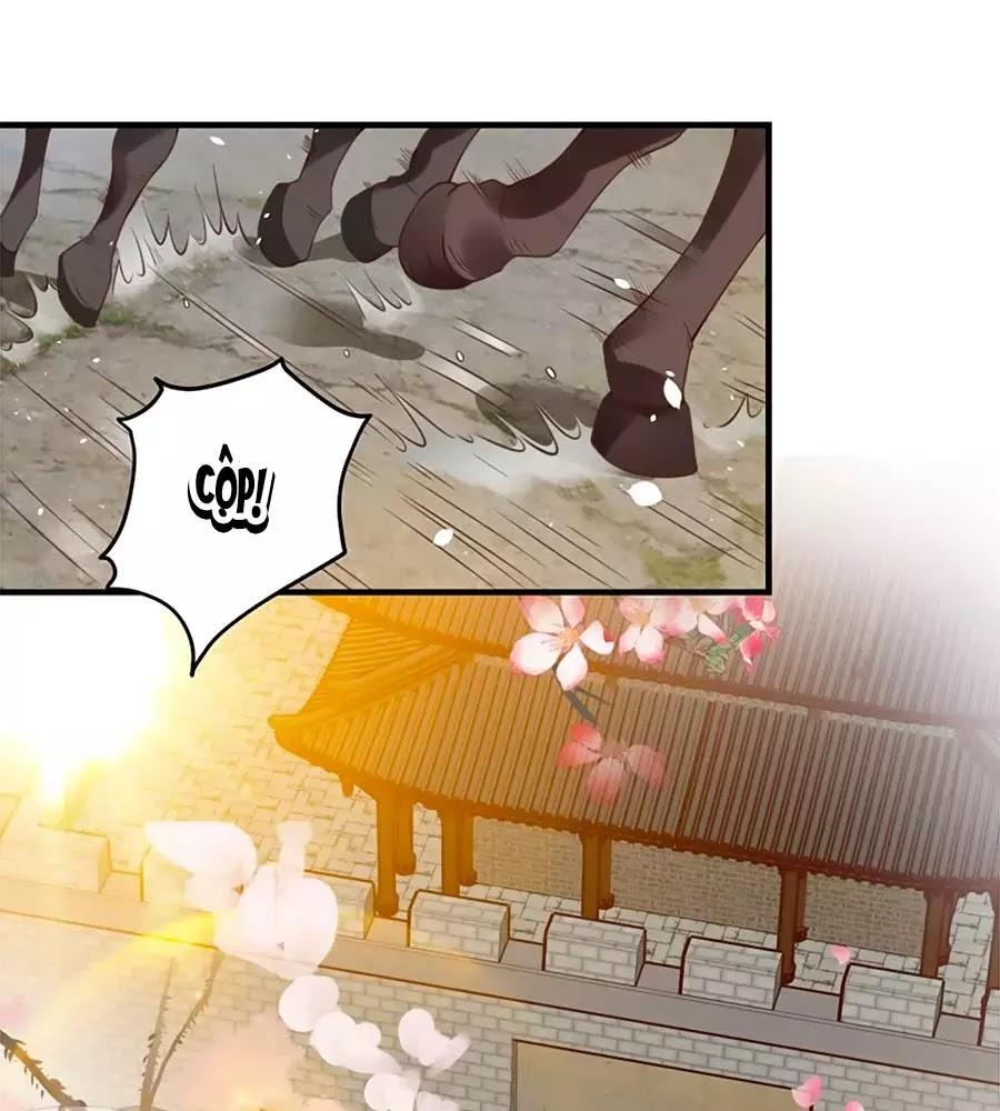 Thịnh Thế Lê Hoa Điện Chapter 94 - Trang 57
