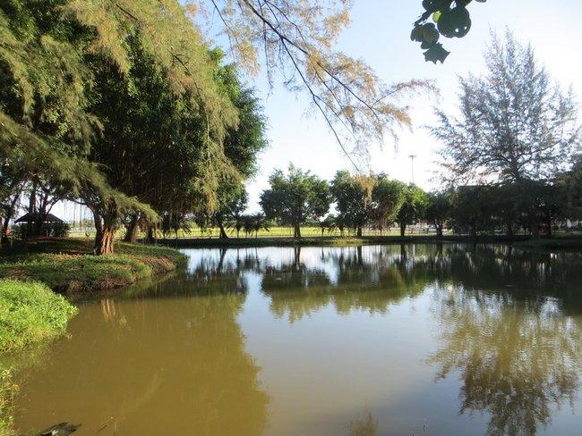 парк в краби таун озеро