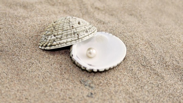 Romantic Images of Sip and Pearls