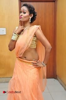 Actress Nisha Pictures in Saree at Jakkanna Movie Audio Launch  0003.JPG