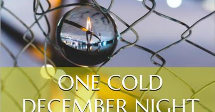 One Cold December Night (FREE till January 1, 2019!)