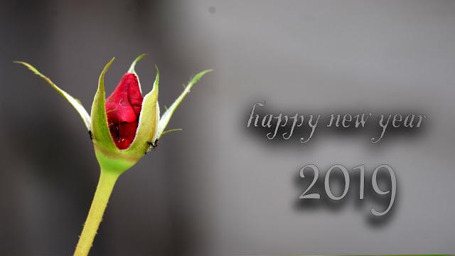 Hew year whatsapp status in gujarati | Happy New Year images 2019, #aim2photography