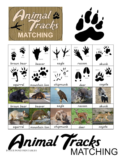 Animal Tracks Matching Game in an Altoid Tin // In Our Pond // kids games // DIY // printable // free printable // crafts // camping // summer camp // learning // summer learning // homeschool  // montessori