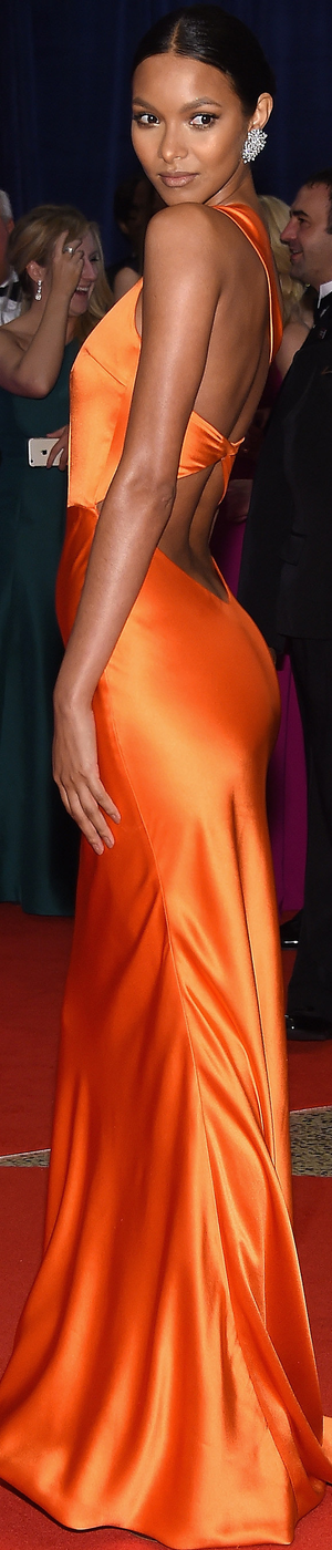 Lais Ribeiro White House Correspondents Dinner