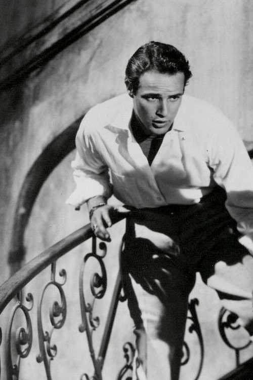 Marlon Brando: My Advice to the World