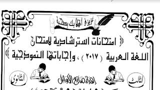 تحميل تسع نماذج الوزارة بالاجابات النموذجية فى اللغة العربية ثانوية عامة 2018