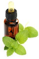 aromatherapie- printemps-menthe