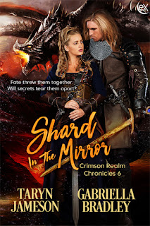 http://www.extasybooks.com/shard-in-the-mirror/