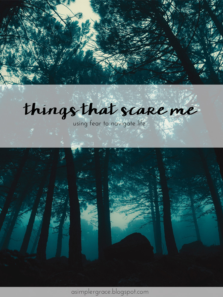 The ten things that scare me and using fear to navigate life. #fear