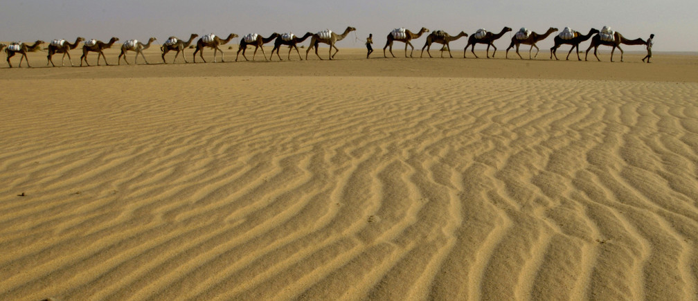 sahara desert essay Free college essay sahara desert sahara desert the sahara desert is the world's largest desert area the word sahara comes from the arabic word.