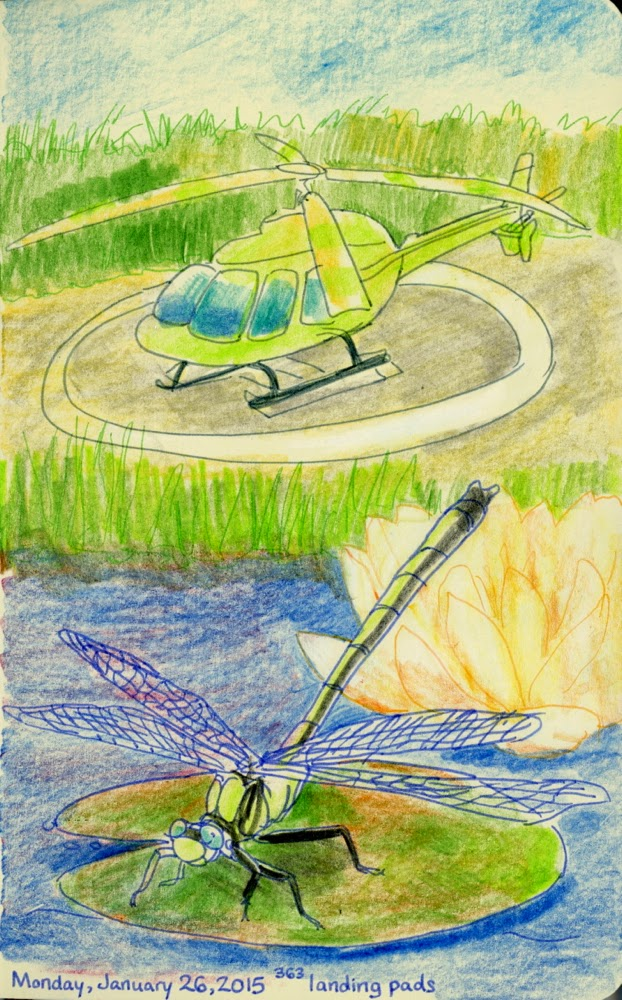 dragonfly and helicopter
