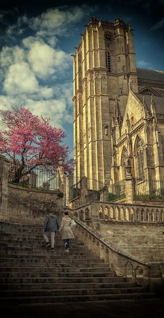 cathedrale saint julien le mans