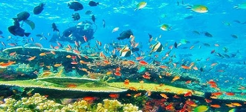 Pakej Tour Aceh Dan Pulau Sabang 4Hari 3Malam