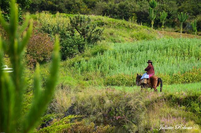 A cheval au Pérou