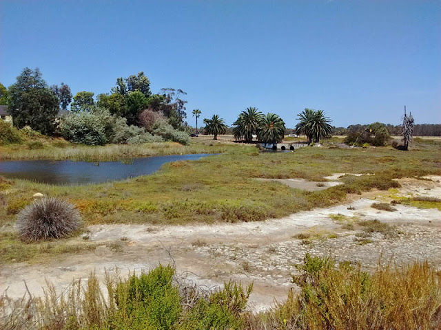North Channel Famosa Slough
