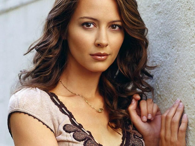 Amy Acker HD Wallpapers 2018