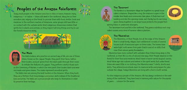 Illustration: Roaming in the Rainforest