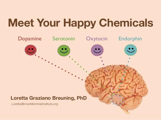 4 Hormon Yang Menentukan Kebahagiaan Seseorang
