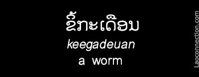 Lao Word of the Day:  A Worm - written in Lao and English