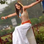 Trisha Krishnam Latest Cute Stills Album