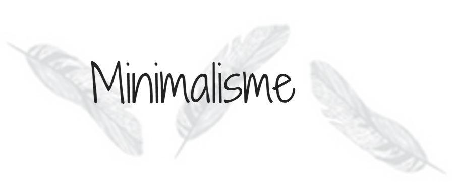 Un blond une brune minimalisme slow life for Livre sur le minimalisme