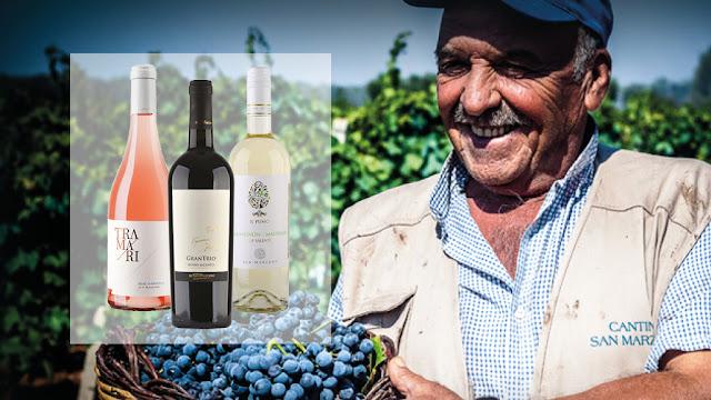 promotie themabox meet the winemaker San Marzano
