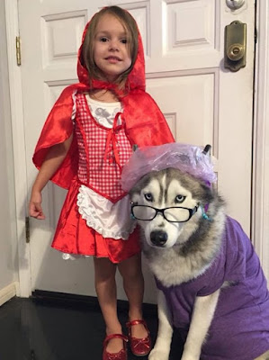 Red Riding Hood Wolf Girl Halloween Costume