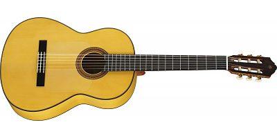 gitar flamenco - Jenis-Jenis serta Variasi Gitar dan Karakteristiknya