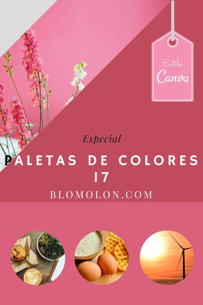 paletas_de_colores_17_estilo_canva